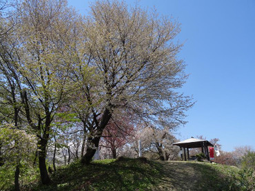 Dsc01721